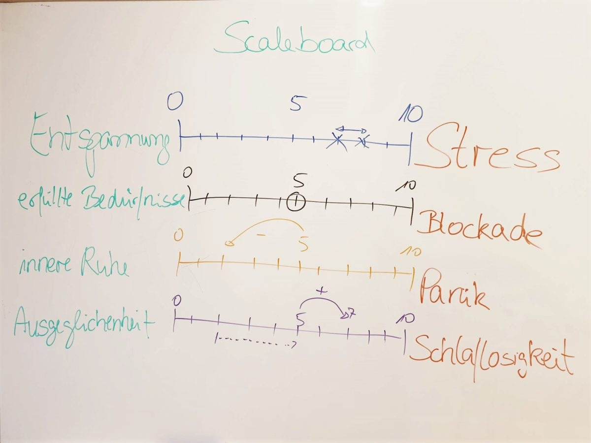 Arbeit am Scaleboard